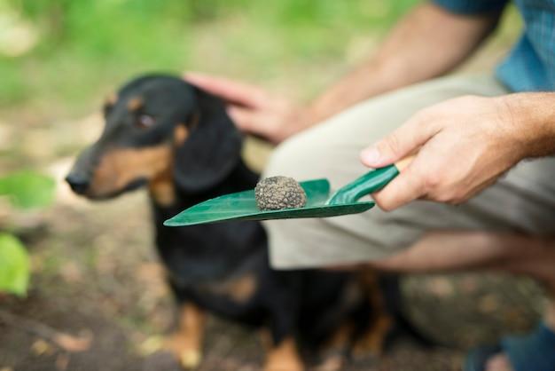 Uomo che ringrazia il suo cane addestrato per averlo aiutato a trovare funghi al tartufo nella foresta
