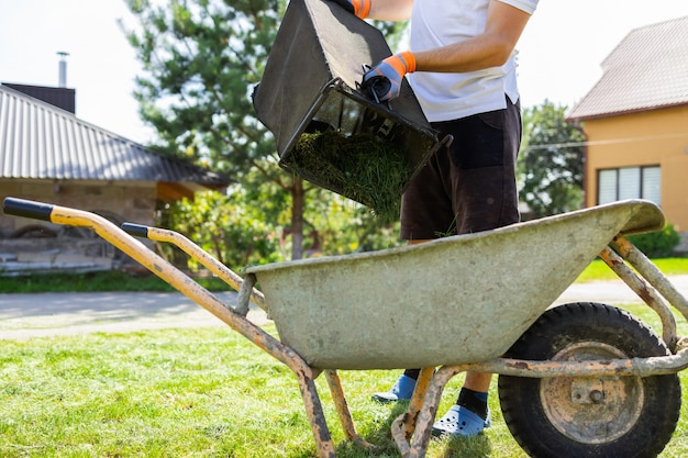 Man unloads mowed grass from a lawn's mower catcher into a wheelbarrow
