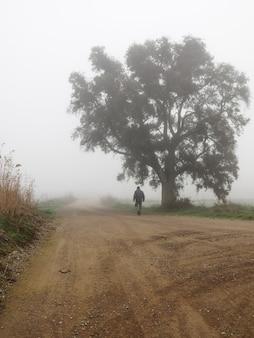 霧の日に木々のそばの人けのない道を歩いている男。田園風景。孤独の概念