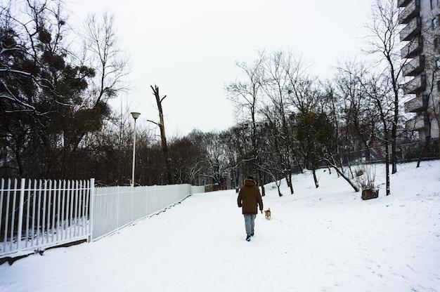 冬の間に雪に覆われた地面に彼の犬を歩く男