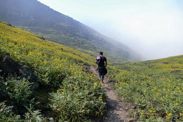 산악 계곡의 꽃 풍경을 걷는 남자