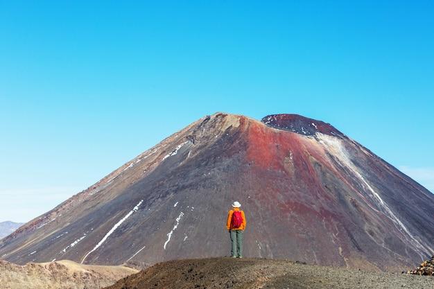 マウントクック国立公園、美しい山岳地帯のあるハイキングコースを歩く男性。ニュージーランドでのトランプ、ハイキング。