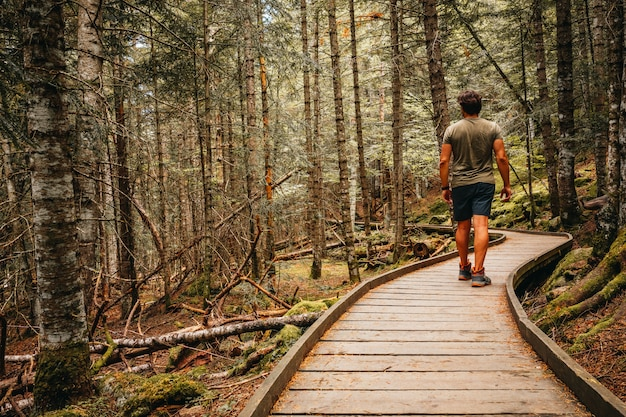 Man walking through which interior of a forest