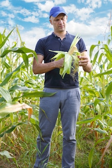 A man with a crop of corn