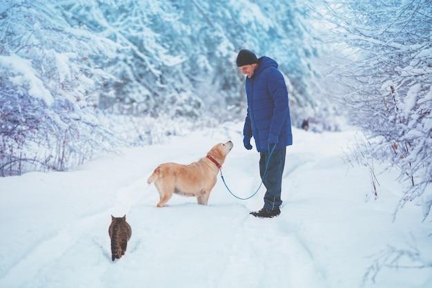 Человек с собакой и кошкой гуляет в заснеженном сосновом лесу зимой
