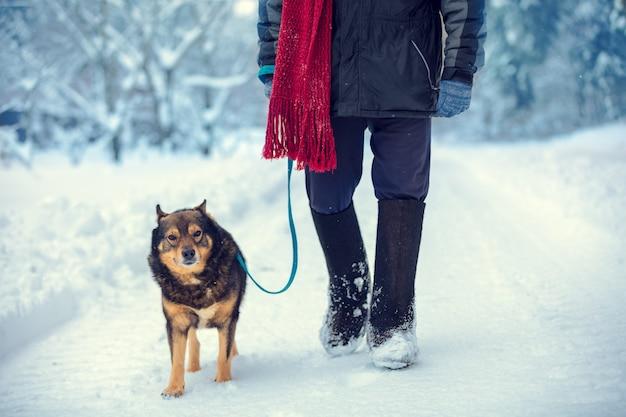 Мужчина с собакой на поводке гуляет по заснеженной проселочной дороге зимой