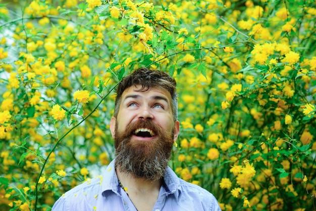 田舎で春の日を楽しんでいる彼の果樹園のひげを生やした男で楽しんでいる背の高い黄色い花の幸福の概念の男性花屋で咲く庭で興奮した表情を持つ男