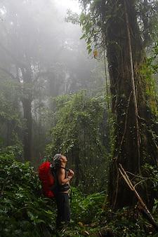 Человек с пешим снаряжением, идущим в мутонном лесу