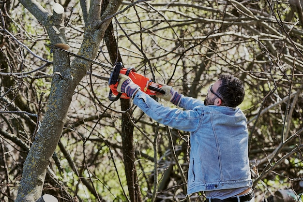 Man with his back turned is cutting down a tree with a chainsaw.