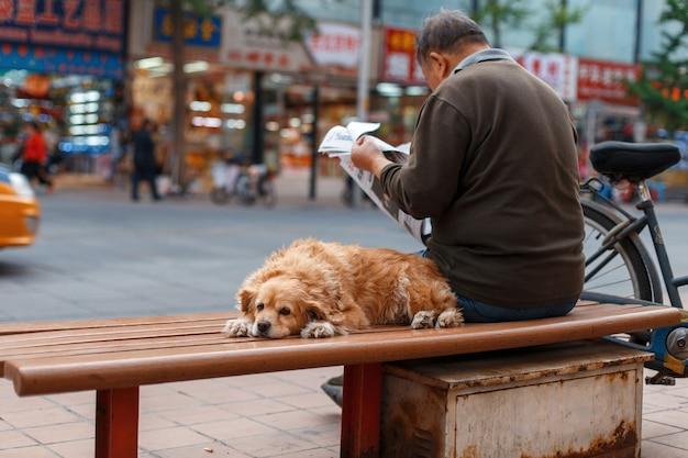 Мужчина со своим лучшим другом сидит на скамейке и читает газету в городе