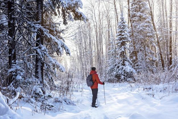 눈 덮인 겨울 자연에서 하이킹하는 노르딕 워킹 폴을 가진 남자. 야외 겨울 활동을 즐기십시오.