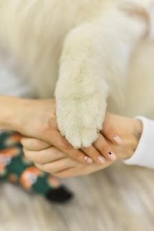 男性、女性、犬が一緒に手を取っています