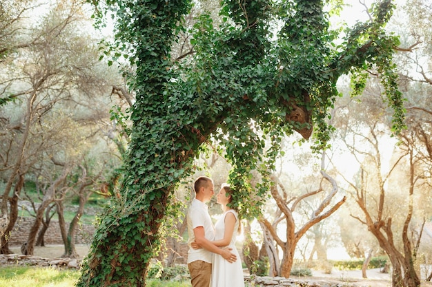 A man and a woman hugging near a beautiful ivy-covered tree in an olive grove