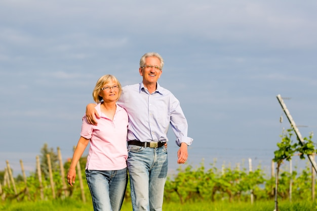 Man and woman, senior couple, having a walk in summer or outdoors in the vineyard