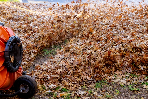 Man in work blows off yellow and red fallen autumn leaves in cleaning yard with wind turbine