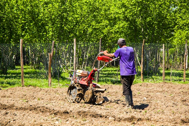 Man working in the field, agricultural scene in georgia