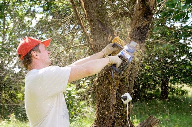 나무 절단 전기 톱을 사용하는 사람