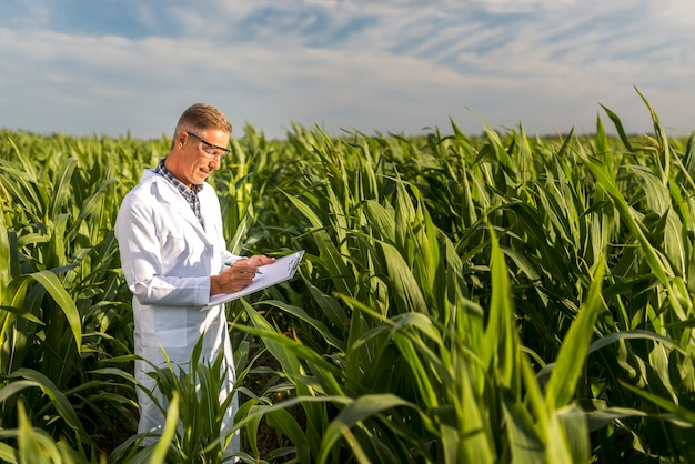 Man writing on a clipboard in a cornfield