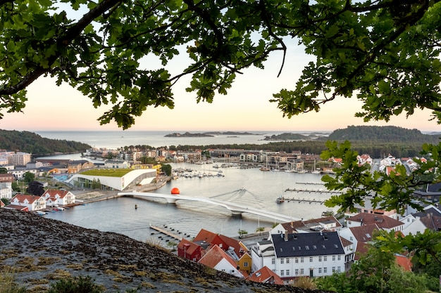 Mandal, a small town in the south of norway. seen from a height, with a cliff and an oak tree in the foreground.
