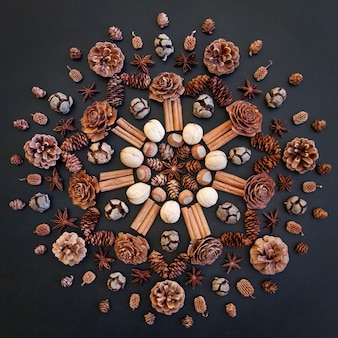Mandala with cones and nuts