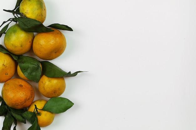 만다린 과일 분리 흰색