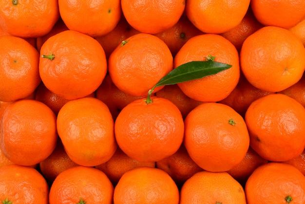 Mandarin orange background.