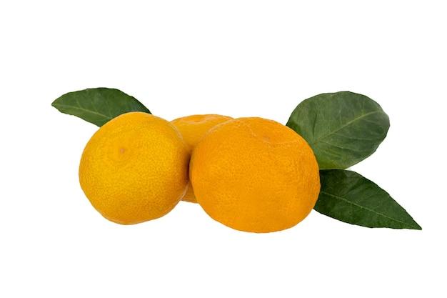 マンダリン、白で分離された葉を持つみかんの柑橘系の果物