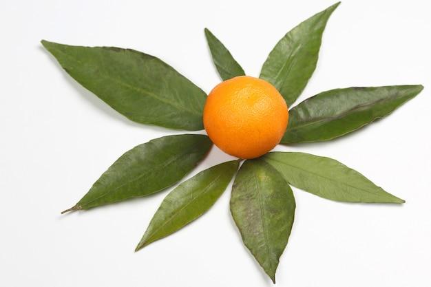 白い背景の葉とみかん。おいしい健康的なビタミン食品
