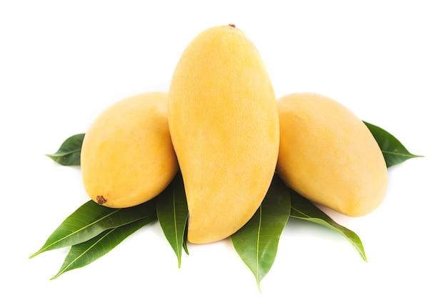 Манго фрукты, изолированных на белом фоне.