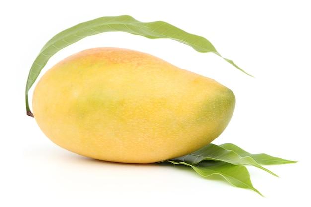 白い背景に分離されたマンゴー。