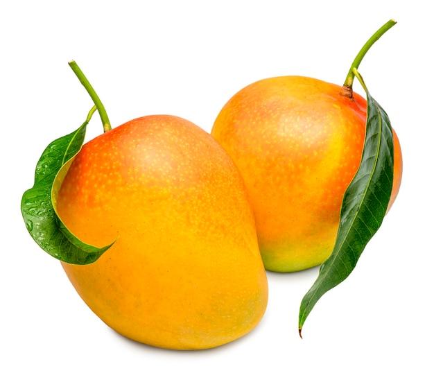 Манго на белом фоне. плоды манго с листьями на белом фоне.