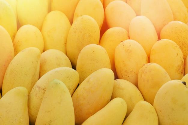 망고 질감 배경 잘 익은 신선한 망고 과일 노란색 달콤한 판매 더미