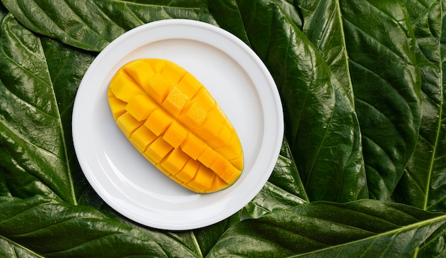 Mango on white ceramic plate on leaves background. top view