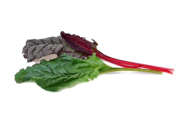 Mangold or swiss chard leaves on a white