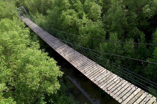 Мангровые леса подвесной мост, бангпу, самут пракан, таиланд