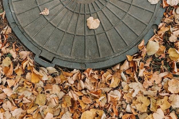 黄色い落ち葉を背景にマンホールの蓋