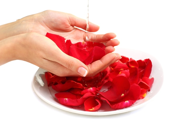 Manicure - hands with france colour nails, red rose petals and water - beauty salon