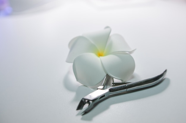 Manicure tool and flower. the concept of beauty and clear