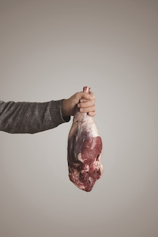 Mans hand in grey sweater holds icelandic raw meat lamb leg flesh, isolated on grey white background. paleo diet, organic food.
