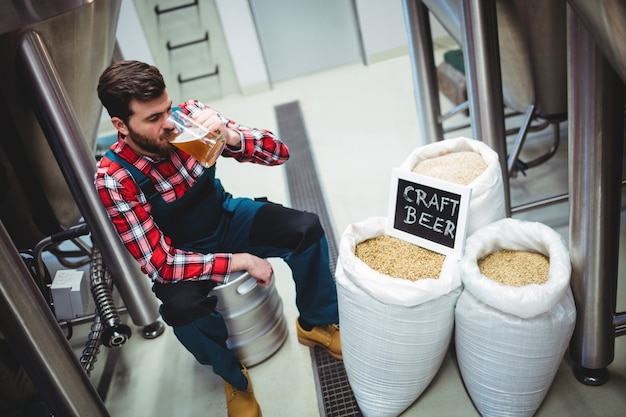Manufacturer drinking beer at brewery