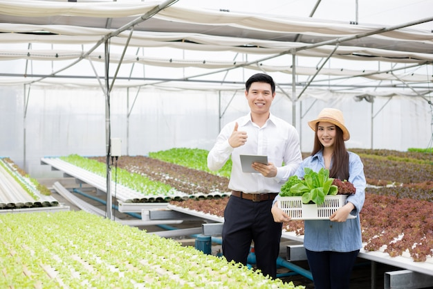 Manufacturers send baskets organic vegetables for consumers.