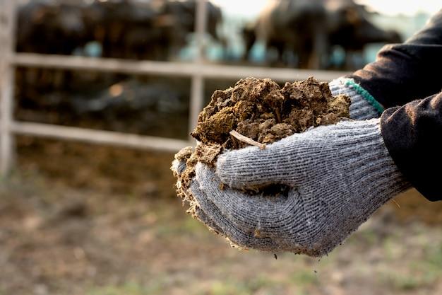 농민의 손에 비료.