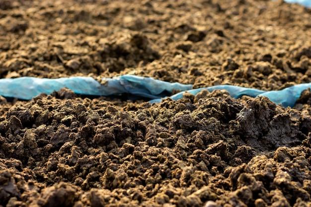 栽培および農業用の肥料または牛糞。
