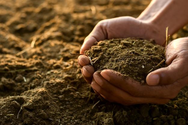 농부 남자의 손에 비료 또는 배설물.