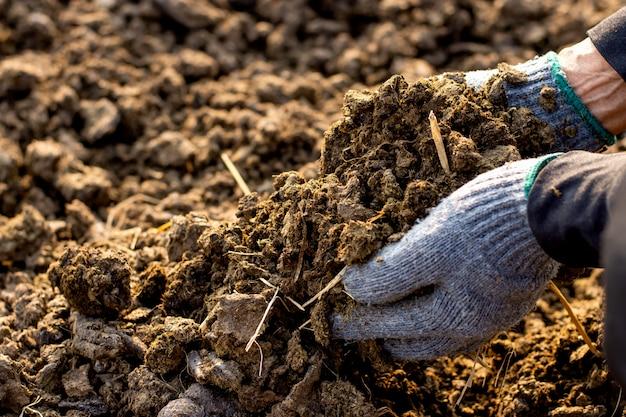 중앙 애완 동물 농장에서 농부의 손에 비료 또는 비료.