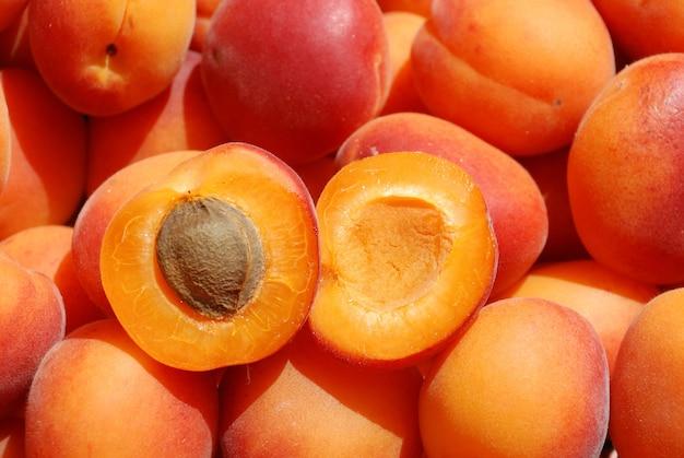 Many apricot close up