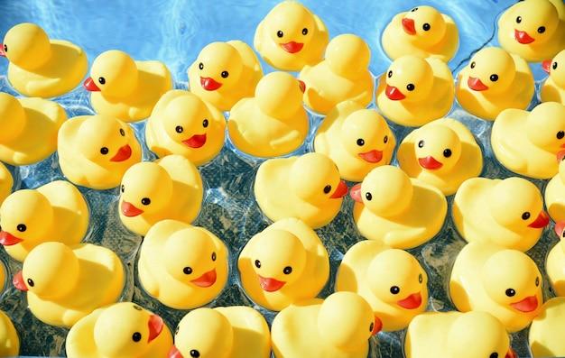 Многие ярко-желтые резиновые утки плавают в бассейне
