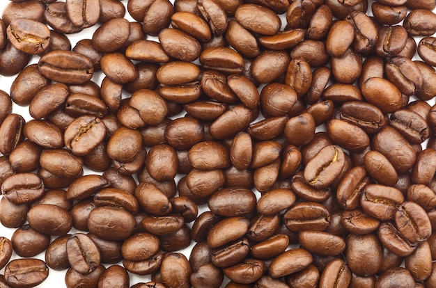 Many brown coffee beans are spread on a white background.