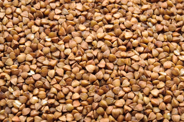 Many buckwheat grains macro close up background