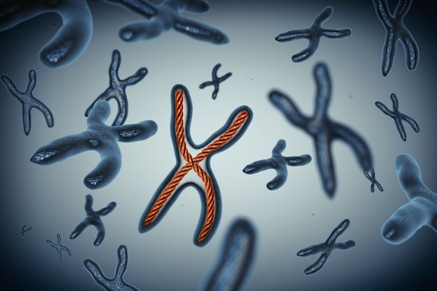 Many chromosomes extreme closeup. 3d rendering.